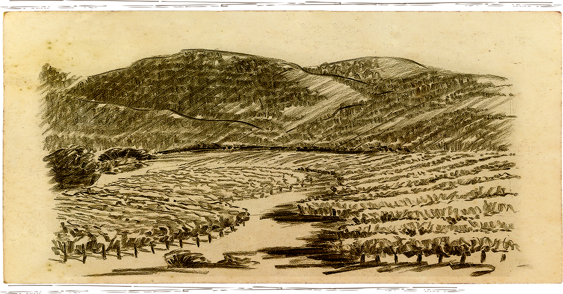 Sketch of Anakota Estate Knights Valley Lake Reservoir